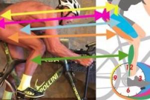 Правильные велотренировки для хорошего результата