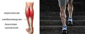 Нижняя часть ног